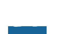IPPVA Logo